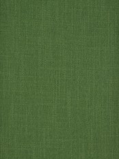 Hudson Cotton Blend Solid Back Tab Curtain (Color: Fern green)